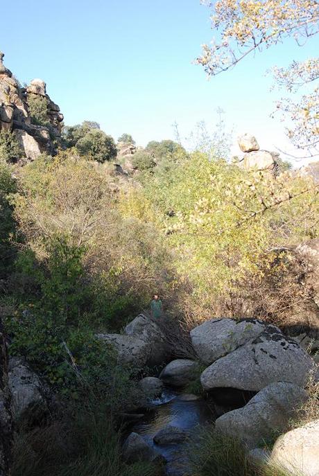 Al otro lado del río y entre los rboles